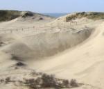 Struinen in de grote speelterreinen bij NP Zuid-Kennemerland | Parnassia. Binnen de gebieden die aangeduid zijn als 'speelterrein' mag u buiten de paden. Hier kunt u naar hartelust struinen, picknicken of sporten. Kinderen kunnen er lekker klimmen en klauteren, pootje baden of hutten bouwen met losliggende takken. <br>van zonsopkomst tot zonsondergang zijn de duinen open.