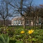 De activiteit 'Ontdek landgoed Elswout' van Landgoed Elswout wordt u aangeboden door dekleineladder.nl uit Haarlem