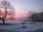 De activiteit 'Winterverhalen in het bos - Duin en Kruidberg' van NP Zuid-Kennemerland | Duin en Kruidberg wordt u aangeboden door dekleineladder.nl uit Haarlem