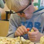 De activiteit 'Kunst en Vliegwerk | Workshop Fossielen hakken' van Teylers Museum wordt u aangeboden door dekleineladder.nl uit Haarlem