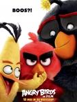 De activiteit 'Angry Birds: De film | 3D NL' van Circus Zandvoort wordt u aangeboden door dekleineladder.nl uit Haarlem