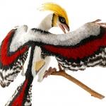De activiteit 'Kunst en Vliegwerk - Kleurige oervogel' van Teylers Museum wordt u aangeboden door dekleineladder.nl uit Haarlem
