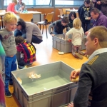 De activiteit 'Workshop Boot op stoom' van Teylers Museum wordt u aangeboden door dekleineladder.nl uit Haarlem