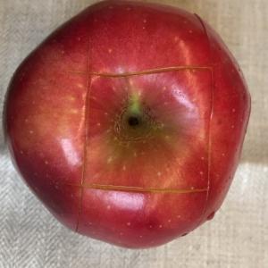snij vervolgens aan de onderkant de appel ook nog eens 4 keer in
