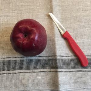 Dit heb je nodig om een appel om te toveren in een paddestoel, een lekkere en gezonde traktatie die ogen van de kinderen zal doen stralen.
