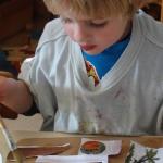 Natuur Collage maken|Is het buiten niet zo lekker... Laat je kind dan eens een mooie natuur-collage maken! Het enige dat je nodig hebt is een stuk karton, plaatjes van de natuur en een beetje hobby-lijm.<br>Eventueel kun je de afbeeldingen nog aanvullen met herfstblaadjes, bloemblaadjes of veertjes.